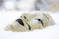 Japanese mask in snow. Profile of Japanese mask lying in snow. Outdoor shot Stock Images