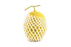 Japanese Melon Royalty Free Stock Photo