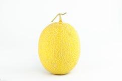 Japanese Melon Stock Image