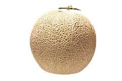 Japanese melon isolate on white background Stock Image