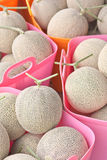Japanese melons in plastic baskets Royalty Free Stock Images