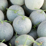 Japanese melons. Sell in the market Royalty Free Stock Photos