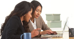 Japanese and Mexican businesswomen working on laptop Stock Photos