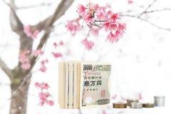 Japanese money on sakura tree background Royalty Free Stock Images