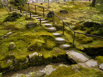 Japanese moss garden Stock Images