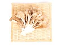Japanese mushrooms on white stock photo