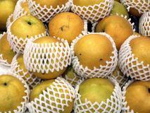 Japanese Nashi Pears Royalty Free Stock Photos