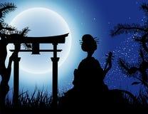 Japanese night, Geisha with Shamisen Stock Photos