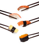 Japanese nigiri sushi isolated Royalty Free Stock Photos