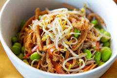 Japanese noodles served in white bowl Royalty Free Stock Photography