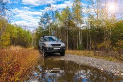 Japanese off road vehicle in autumn forest Stock Photo