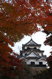 Japanese old castle in Hikone. Hikone old castle in autumn Stock Photo