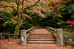 Japanese old traditional bridge. At Mino Quasi-national Park. Osaka, Japan stock photo