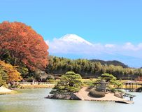 Japanese ornamental garden and sacred Mount Fuji Fujiyama, Japan. Japanese ornamental garden and sacred Mount Fuji Fujiyama in clouds on blue sky background royalty free stock photos