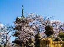 Japanese pagoda Royalty Free Stock Images