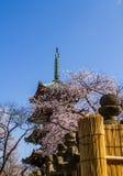 Japanese pagoda Stock Photography