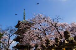Japanese pagoda Stock Photo