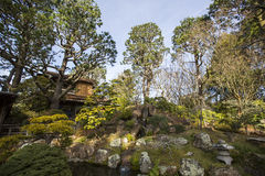 Japanese pagoda in Golden Gate Park. Royalty Free Stock Photography