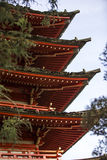 Japanese pagoda in Golden Gate Park. Royalty Free Stock Images