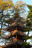 Japanese Pagoda within trees at Ueno Park. Stock Images