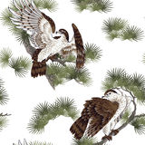 Japanese painting hawk. It is a pine to a Japanese painting hawk Stock Photos