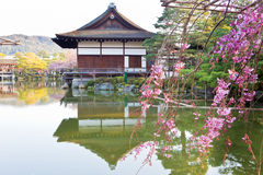 Japanese palace. Cherry bossom and japanese palace with reflex on water Stock Photography