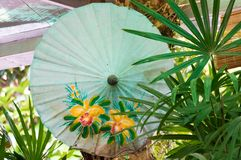 Japanese paper umbrella green stock images