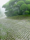 Japanese park. Foggy weather in Japanese park, cobbled stone way foreground and fresh green summer trees apart Royalty Free Stock Images