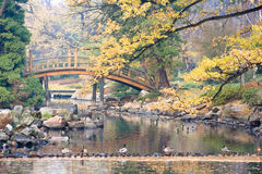 Japanese Park. In the city of Wroclaw in Poland Stock Photo