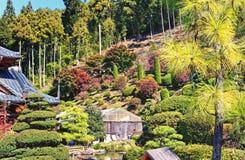 Japanese park Royalty Free Stock Image