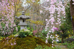 Japanese park Stock Images