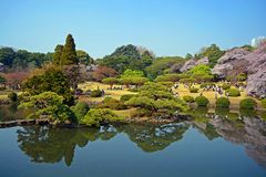 Japanese park #2 Royalty Free Stock Photos