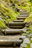 Japanese Path Stock Photos
