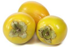 Japanese persimmon Royalty Free Stock Photo