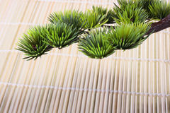 Japanese pine Stock Photo