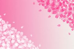 Japanese cherry blossom abstract and vintage pink paper background Stock Photography