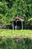 Japanese pond Stock Photos