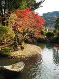 Japanese pond in garden Stock Image