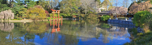 Japanese Pond Spring Panorama Royalty Free Stock Photo