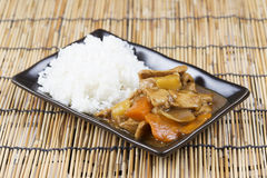 Japanese pork curry with rice ,carrot,onion and potato Stock Images