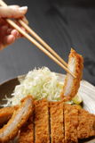 Japanese pork cutlet Tonkatsu Stock Images