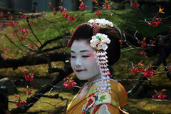 Japanese portrait Stock Image