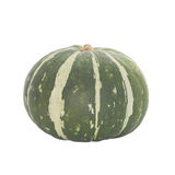 Japanese pumpkin or green pumpkin Stock Photography
