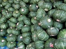 Japanese pumpkin. Produce from the farm, it was piled together Royalty Free Stock Photos