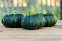 Japanese pumpkin on wooden board. Royalty Free Stock Photo