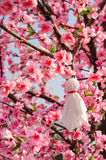 Japanese Rain Doll hanging on Sakura tree in outdoor garden Royalty Free Stock Photo
