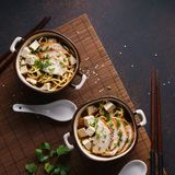 Japanese ramen soup with chicken, tofu and chives royalty free stock photos