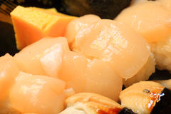 Japanese real sushi food Stock Photography