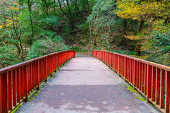 Japanese red Bridge in the forest Stock Photos