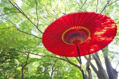 Japanese red paper umbrella Stock Photos